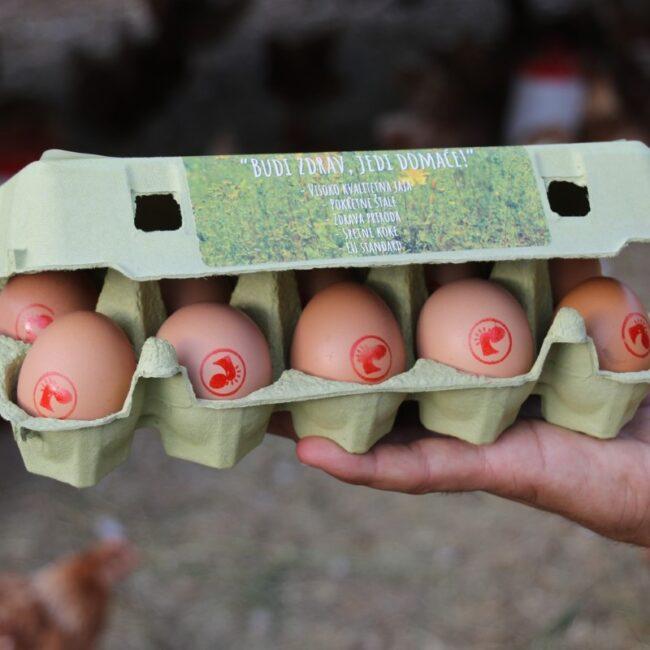 sanbor rama prodaja jaja (1)